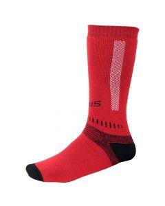 CAMPUS DAMI шкарпетки