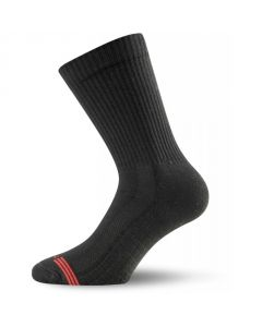 Шкарпетки Lasting TSR