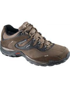 SALOMON ELIOS 2 GTX W кросівки